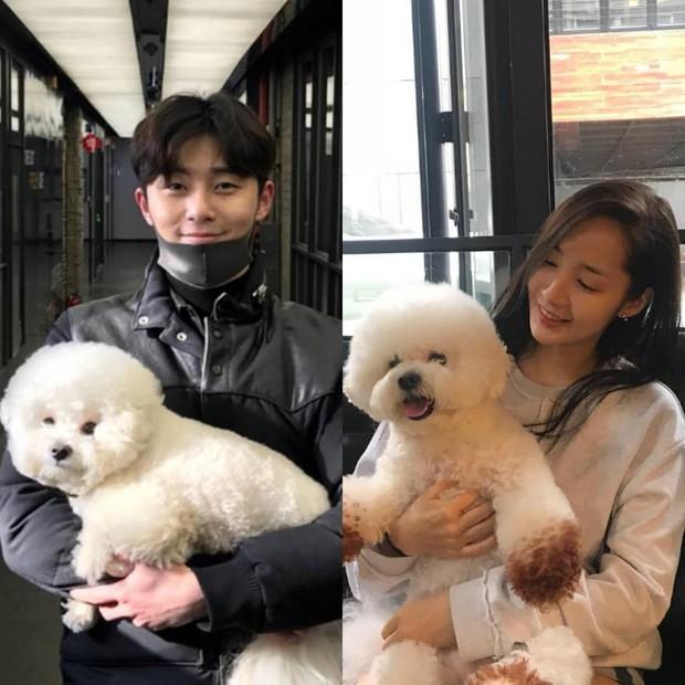 Dân tình náo loạn trước bằng chứng Park Min Young công khai ám chỉ việc hẹn hò với Park Seo Joon từ 3 năm trước? - Ảnh 6.