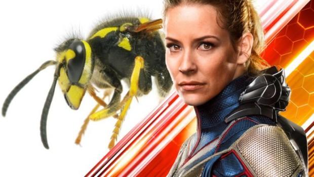 Chị Ong Nâu của Ant-Man 2 oan ức chia sẻ vừa bị chính... ong thật đốt - Ảnh 2.