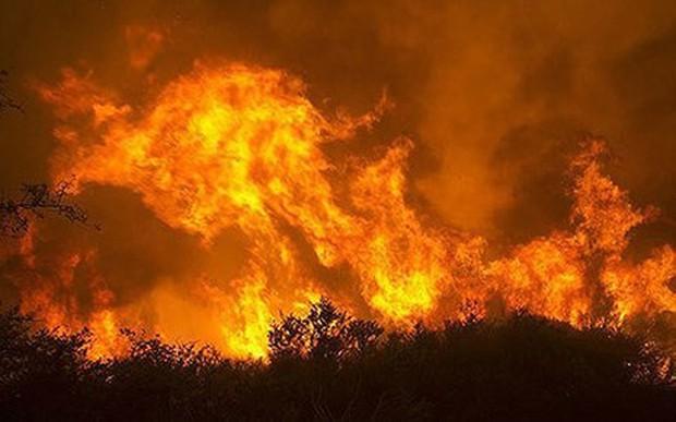 Cháy rừng ở Mỹ làm 6 người thiệt mạng và hàng trăm ngôi nhà bị phá hủy - Ảnh 1.