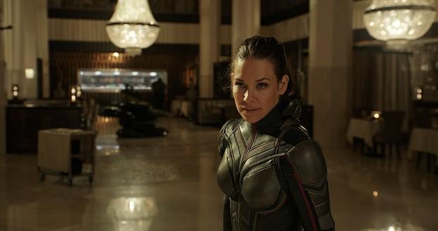 """""""Ant-Man and the Wasp"""": Khi mỹ nhân ra tay cứu anh hùng trong cuộc chiến vắng bóng kẻ ác - Ảnh 2."""