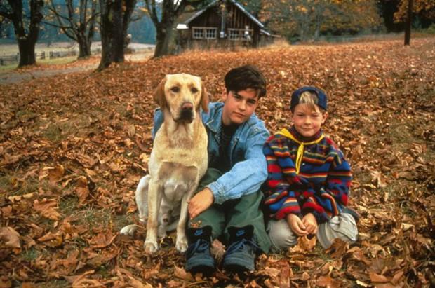 7 bộ phim giáo dục kỹ năng sinh tồn hữu ích cho mọi gia đình! - Ảnh 3.