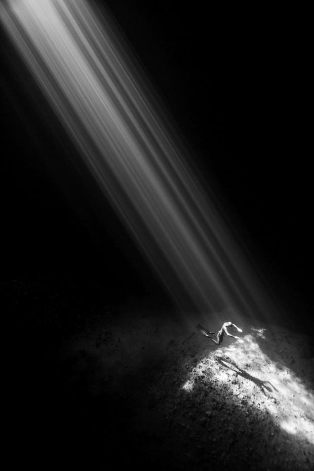 Những hình ảnh dưới nước đẹp đến nghẹt thở trong cuộc thi Underwater Photographer Of The Year 2018 - Ảnh 7.