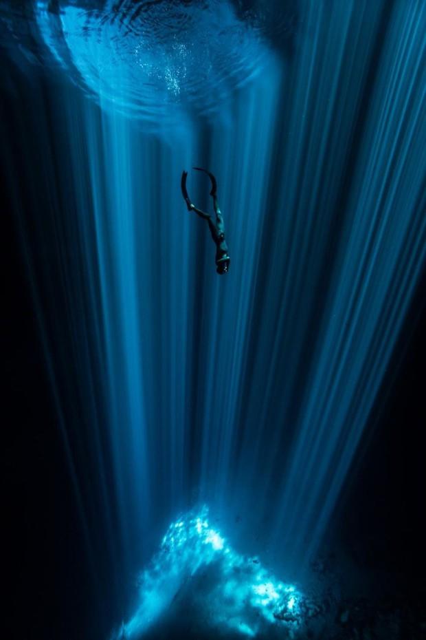 Những hình ảnh dưới nước đẹp đến nghẹt thở trong cuộc thi Underwater Photographer Of The Year 2018 - Ảnh 23.
