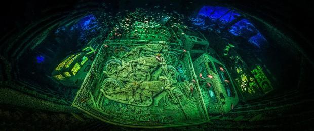 Những hình ảnh dưới nước đẹp đến nghẹt thở trong cuộc thi Underwater Photographer Of The Year 2018 - Ảnh 33.