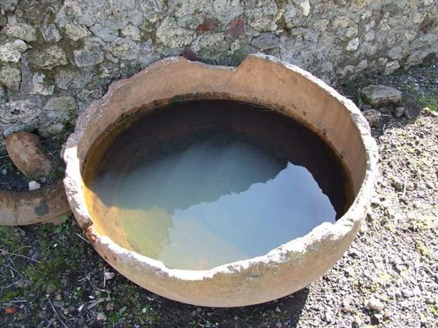 Những sự thật khó tin về cuộc sống của người La Mã cổ: đánh răng bằng nước tiểu, ăn no quá nôn luôn tại bàn - Ảnh 1.