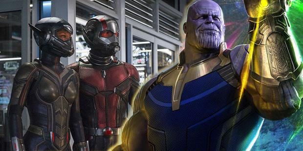Bằng chứng cho sự thừa thãi của bộ đôi Ong Kiến Ant-Man and the Wasp ở vũ trụ Marvel - Ảnh 2.
