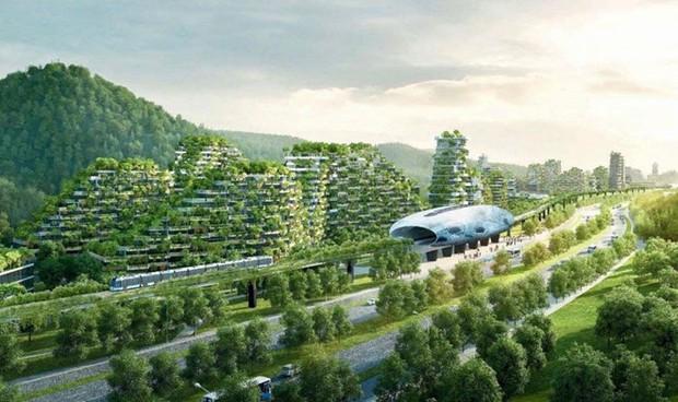 Trung Quốc sẽ xây dựng hàng trăm thành phố rừng vào 2025 - Ảnh 1.
