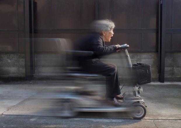 Cụ bà Nhật 90 tuổi tiếp tục chinh phục Internet bằng niềm vui sống mỗi ngày qua nhiếp ảnh - Ảnh 4.