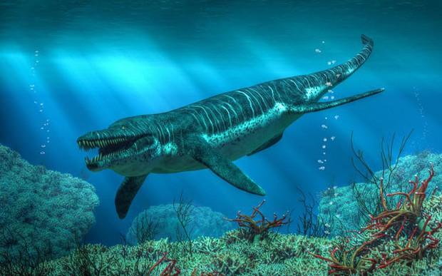 Đây là 5 con quái vật tiền sử cũng xứng đáng được lên phim giống Megalodon - Ảnh 2.