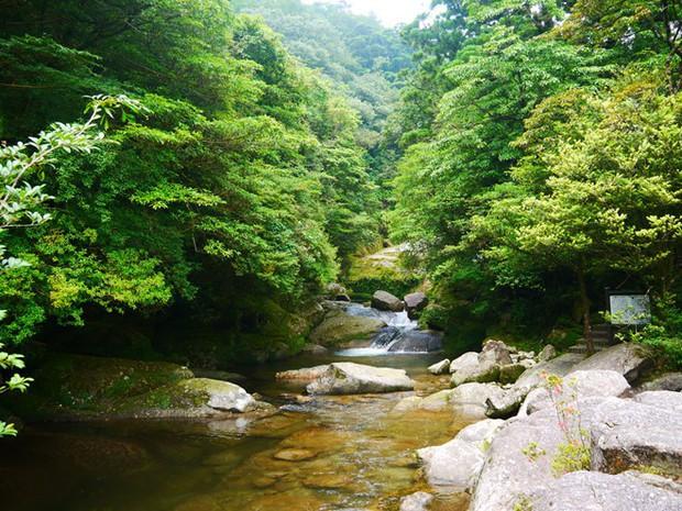 5 anime đẹp đến ngẩn ngơ khiến bạn muốn đặt chân tới Nhật Bản ngay-lập-tức! - Ảnh 18.