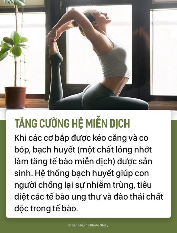 Bạn sẽ muốn tập Yoga đều đặn hơn ngay khi biết những tác dụng tuyệt vời này - Ảnh 5.