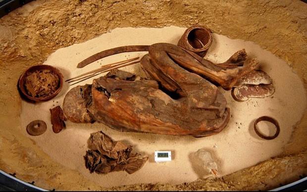 Phát hiện này đã thay đổi cách nhìn của ta về bí thuật ướp xác trường tồn nghìn năm của người Ai Cập cổ - Ảnh 1.