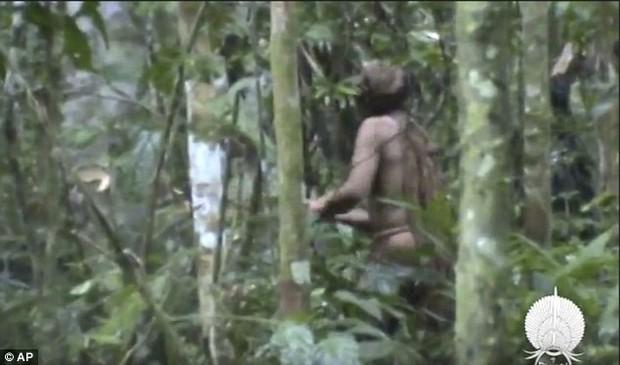 Người đàn ông cô độc nhất thế gian: Sống một mình suốt 22 năm trong khu rừng rậm Amazon - Ảnh 3.