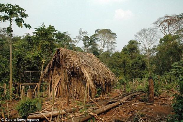 Người đàn ông cô độc nhất thế gian: Sống một mình suốt 22 năm trong khu rừng rậm Amazon - Ảnh 5.