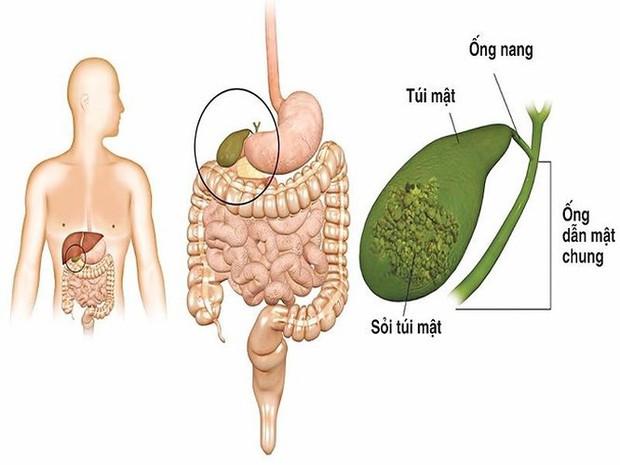 Hậu quả khôn lường khi nhịn ăn để giảm cân - Ảnh 4.