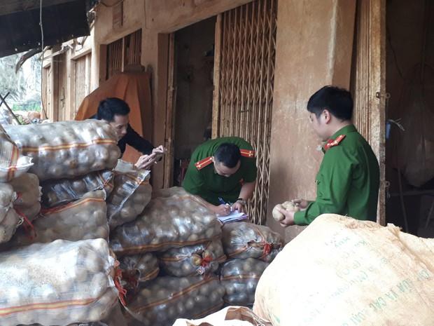 """Bắt quả tang cơ sở """"phù phép"""" 1.000kg khoai tây Trung Quốc nhái Đà Lạt - Ảnh 2."""