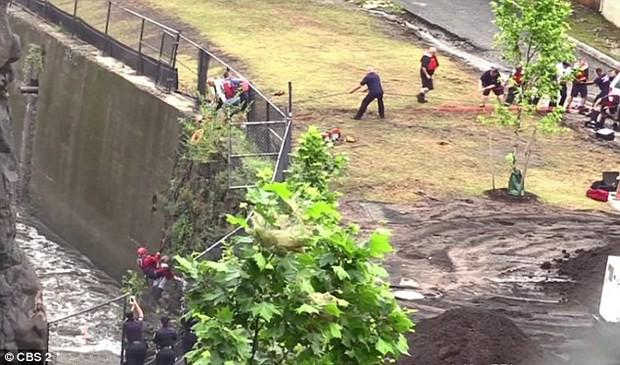 Góc nghịch dại: Nhảy xuống thác nước xiết để vớt điện thoại, thanh niên phải gọi hàng tá nhân viên cứu hộ tới... cứu mình - Ảnh 3.