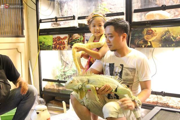Ông bố trẻ ở Hà Nội và bộ sưu tập những con vật nhìn thôi đã sợ: Đủ các loài rắn, nhện, ếch cho đến rồng đất - Ảnh 13.