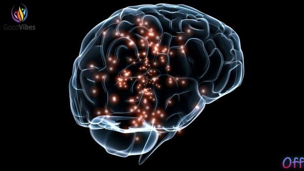 Shark Linh nói rất chuẩn khoa học: Trước 25 tuổi nên học càng nhiều càng tốt, vì não bộ của bạn cho phép điều đó - Ảnh 3.