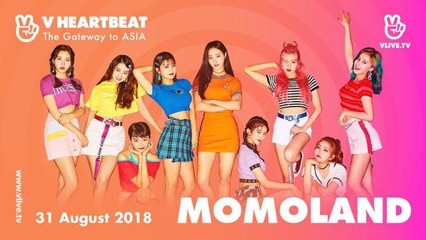 Xác nhận Momoland, Monsta X góp mặt, show Hàn-Việt cuối tháng 8 lại gây xôn xao khi mời 1 giọng ca quyền lực - Ảnh 3.
