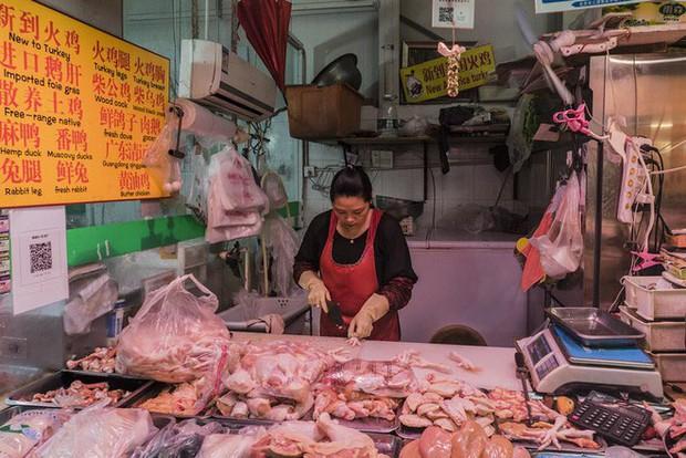Trung Quốc: Nhiều trang trại cho gà đeo smartwear, theo dõi vòng đời bằng blockchain, giá bán tới 800.000 đồng/con - Ảnh 3.