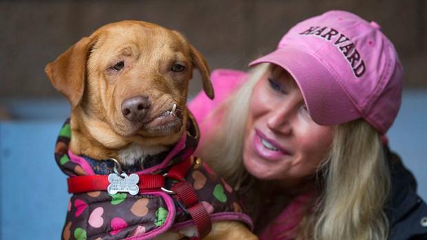 Chú chó xấu xí với khuôn mặt biến dạng trở thành nguồn cảm hứng sống của nhiều người nhờ điều đặc biệt này - Ảnh 4.