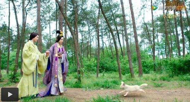 Diên Hi Công Lược: Nhĩ Tình - Viên Xuân Vọng là vợ chồng từ 4 năm trước - Ảnh 11.