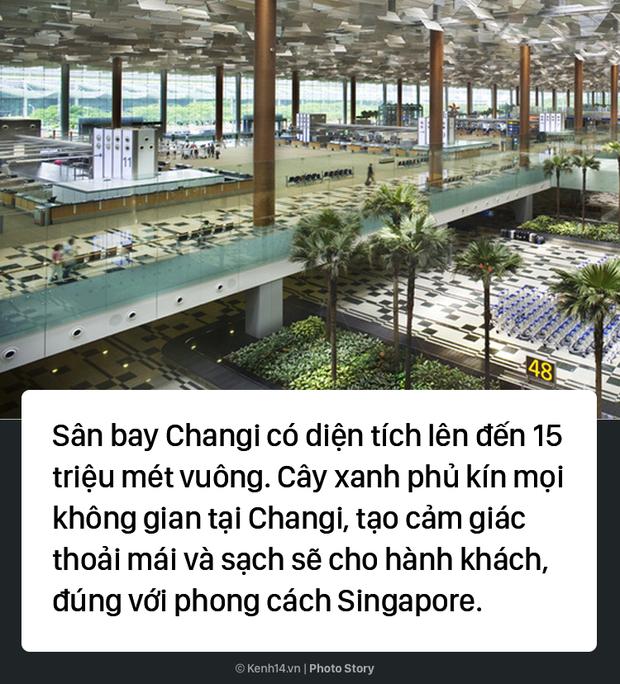 Đến sân bay đẳng cấp nhất thế giới này, dù có bị delay thì các hành khách vẫn thích thú - Ảnh 1.