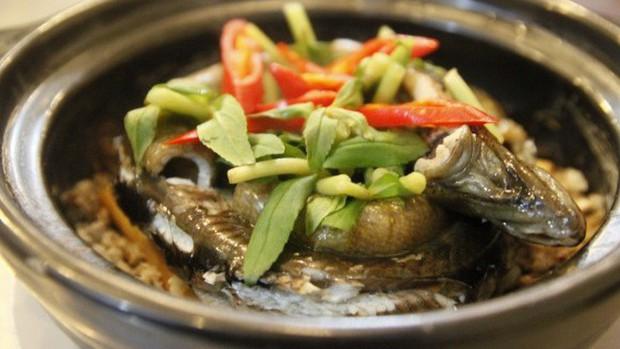 Nhiều người ăn thịt lươn mà không biết rằng nó là sâm động vật - trong Đông y là thuốc quý như vàng nhờ những công dụng này - Ảnh 3.