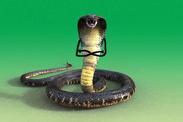 Vẽ rắn thêm chân quả là ngớ ngẩn nhưng vẽ rắn thêm tay lại hay biết mấy - Ảnh 6.