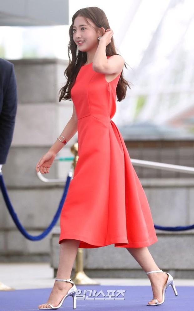 Thảm xanh khủng nhất hội tụ hơn 70 sao Hàn: Sao nhí lột xác khó tin, TWICE lòe loẹt đối đầu Red Velvet sexy - Ảnh 8.