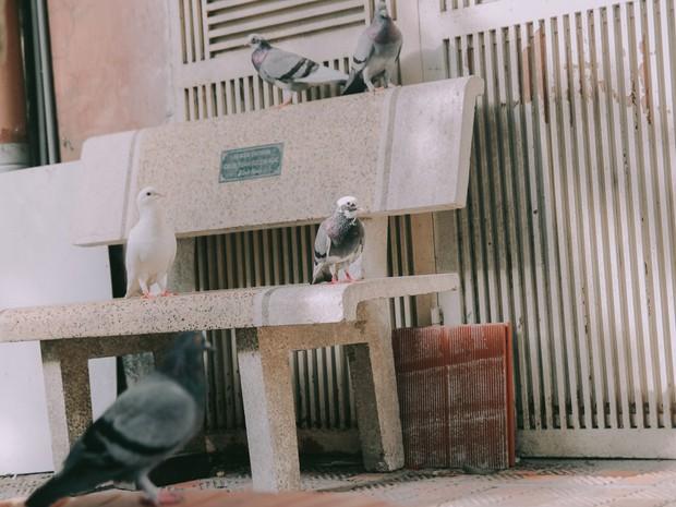 Ở Hà Nội có 1 ngôi trường mà đến cái thùng rác cũng là 1 góc sống ảo so deep - Ảnh 7.
