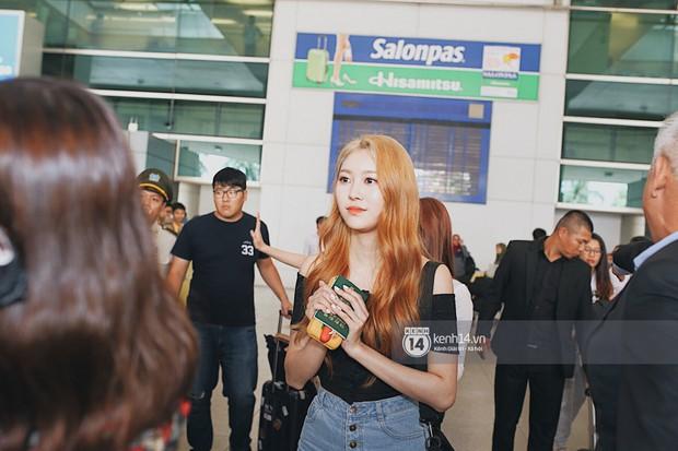 Nữ thần lai Nancy gây sốt vì quá đẹp, MOMOLAND và Monsta X khiến sân bay Tân Sơn Nhất vỡ trận - Ảnh 10.