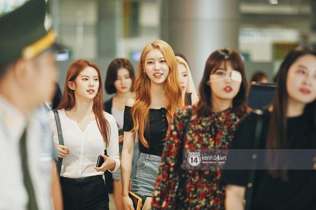 Nữ thần lai Nancy gây sốt vì quá đẹp, MOMOLAND và Monsta X khiến sân bay Tân Sơn Nhất vỡ trận - Ảnh 9.