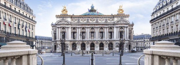 Vì sao người Paris nuôi ong lấy mật trên mái vòm những tòa nhà đông khách nhất thành phố này? - Ảnh 2.