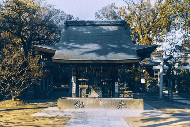 Bộ ảnh ở Kyoto này sẽ cho bạn thấy một Nhật Bản rất khác: Bình yên, dịu dàng và đẹp như những thước phim điện ảnh - Ảnh 4.