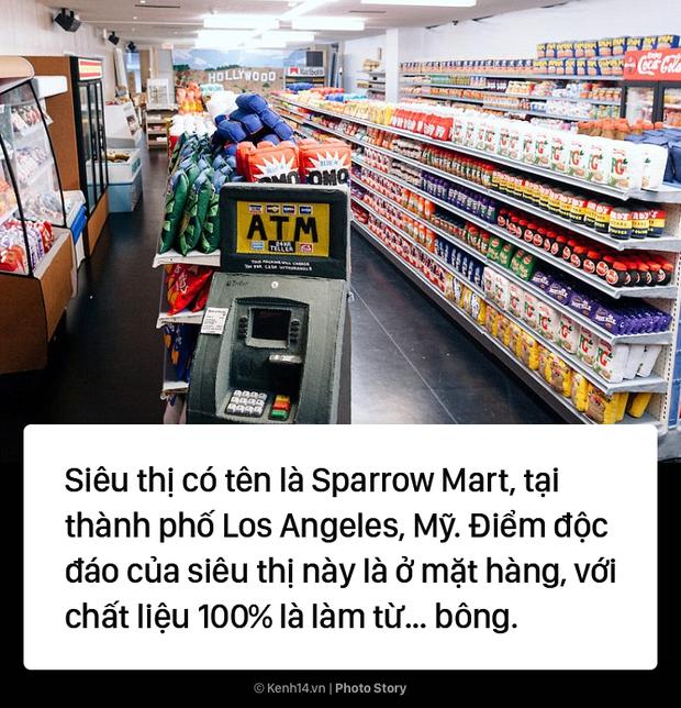Mỹ: Một siêu thị đặc biệt mà bên trong chỉ bán toàn là đồ... nhồi bông - Ảnh 1.