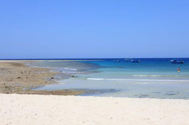 Ai Cập: Đi bơi ở vùng biển có cảnh báo nguy hiểm, nam du khách bị cá mập cắn chết - Ảnh 2.