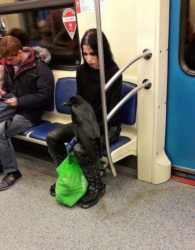 Những hình ảnh hài hước chỉ có trên tàu điện ngầm: Từ chị gái thái rau tới Pikachu thò tay ôm cột - Ảnh 1.
