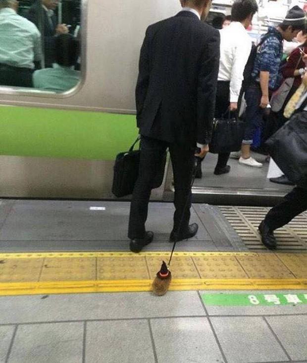 Những hình ảnh hài hước chỉ có trên tàu điện ngầm: Từ chị gái thái rau tới Pikachu thò tay ôm cột - Ảnh 4.