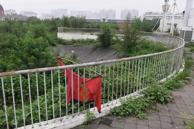Trung Quốc 10 năm sau Thế Vận Hội 2008: Chỉ còn sân vận động Tổ Chim được sử dụng, các cơ sở vật chất khác đều bị bỏ hoang phế đến ám ảnh - Ảnh 11.