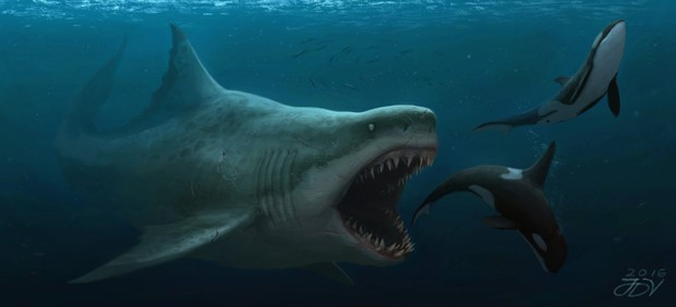 8 lần khoe nanh của lũ cá mập trên màn ảnh khiến người xem lạnh cả gáy - Ảnh 9.