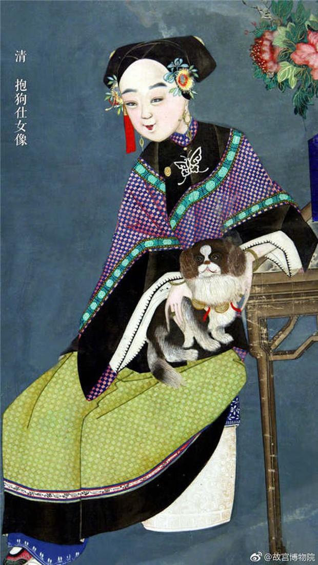 """Cún cưng của Cao Quý phi từng phá banh hoàng cung trong """"Diên Hi"""", nhưng số phận chó hoàng gia có đúng là đẹp như phim? - Ảnh 8."""