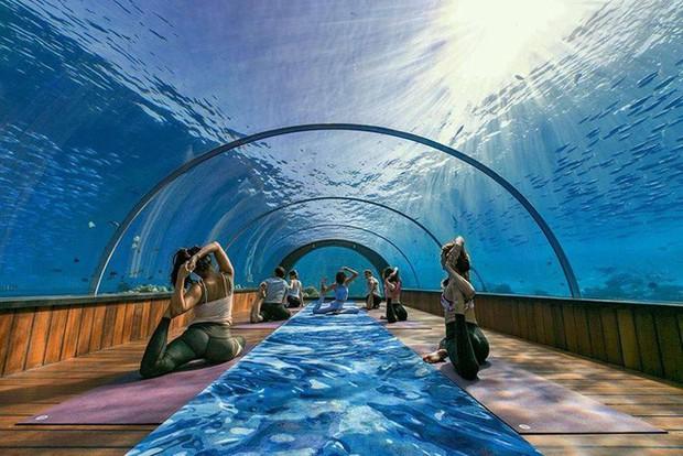Lớp học yoga dưới nước tại đảo Hurawalhi