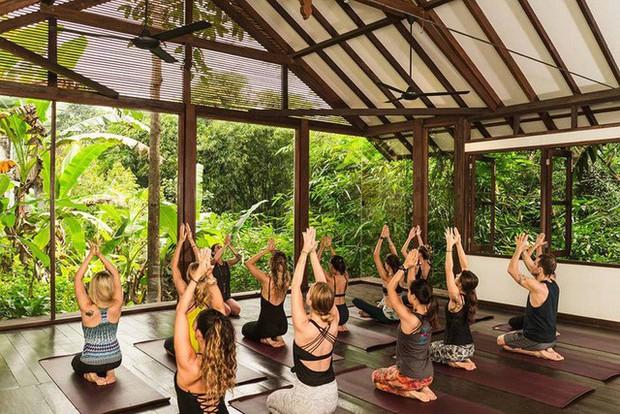 Lớp học Yoga trong rừng