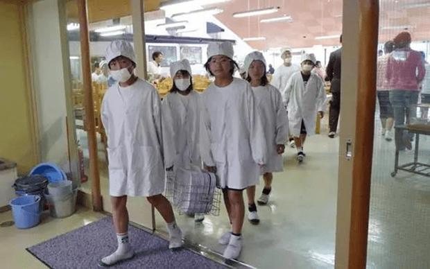 Chỉ một bữa trưa của học sinh tiểu học đã cho thấy người Nhật bỏ xa thế giới ở lĩnh vực trồng người như thế nào - Ảnh 3.