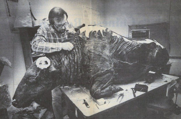 Các nhà khảo cổ làm gì khi phát hiện ra xác ướp bò rừng 36.000 năm tuổi? Họ đã... làm thử món bò hầm? - Ảnh 5.