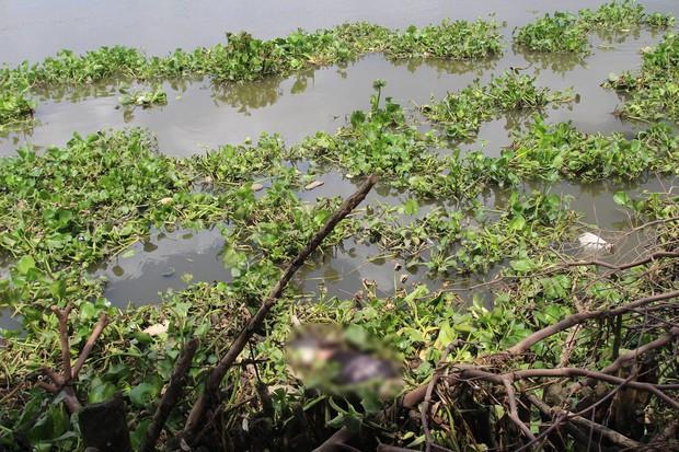 Phát hiện thi thể người đàn ông trôi trên sông Sài Gòn - Ảnh 1.