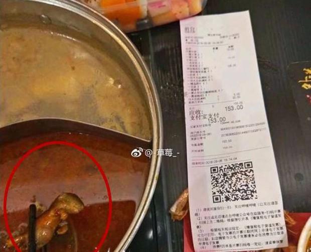 Thai phụ ăn phải nồi lẩu có xác chuột chết, nhà hàng gây phẫn nộ khi đòi cho tiền để phá thai nếu đứa trẻ trong bụng bị ảnh hưởng - Ảnh 1.