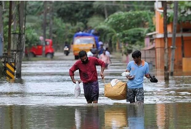 """36 người chết ở Ấn Độ vì """"sốt lạ"""" - Ảnh 1."""